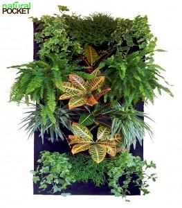 Giardini verticale interni Natural Pocket (3)