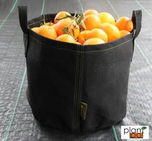 Pot geotessile  Plantpot con manici  2
