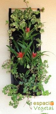 Jardines verticales para plantas arom ticas espacio vegetal for Jardines verticales pdf