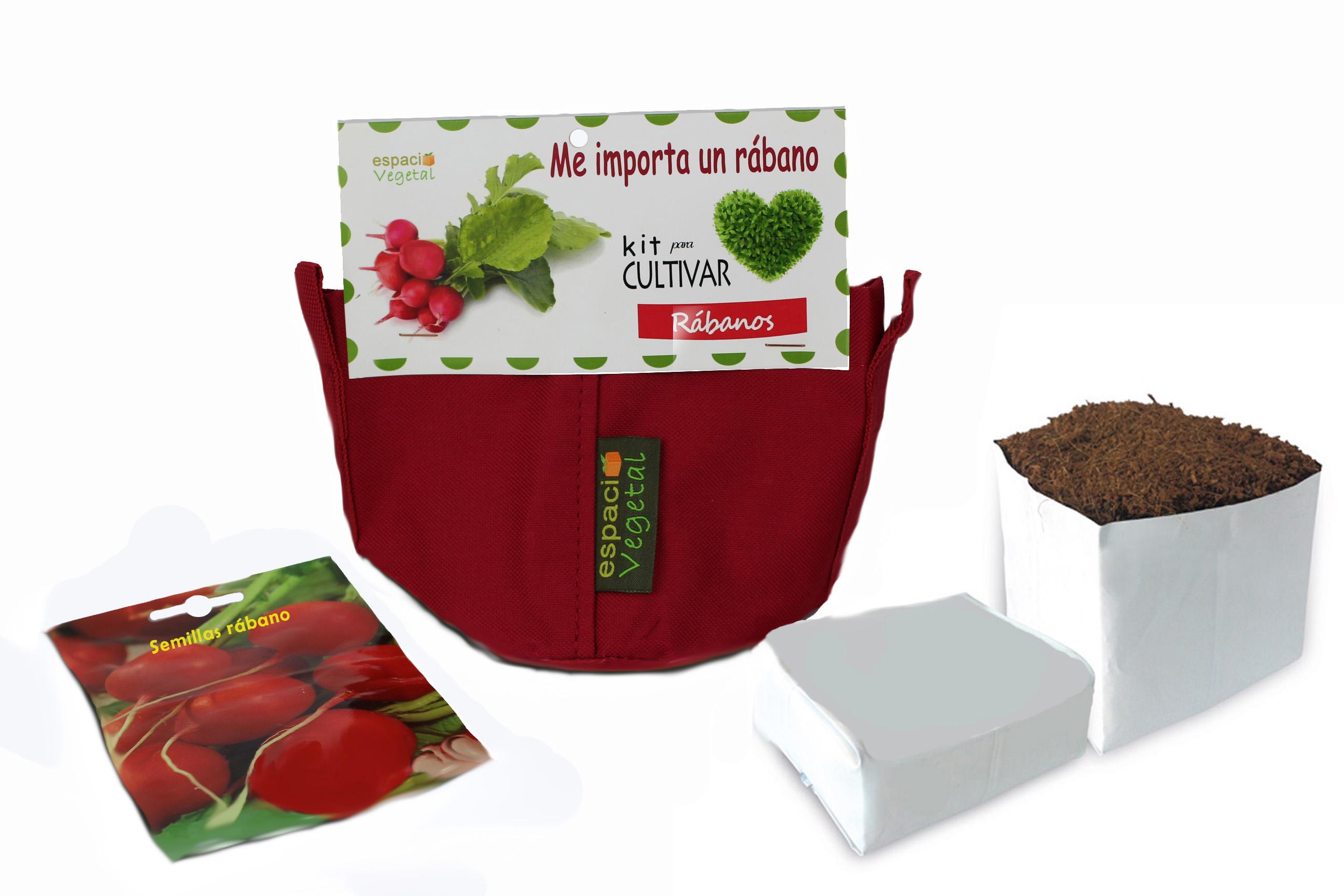 plantar rábanos en casa