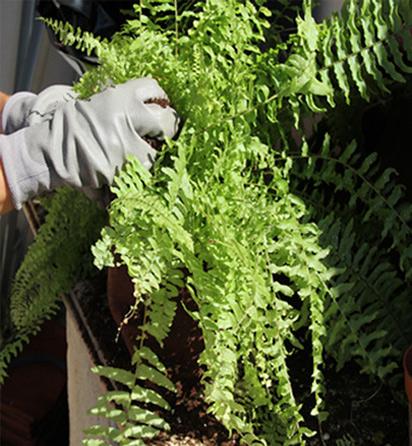 jardinera-vertical-para-pisos