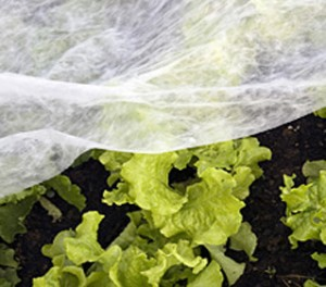 tela anti heladas para cultivos