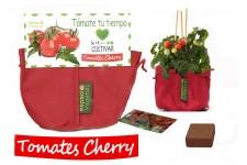 Cultivar tomates en casa